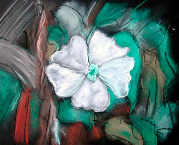 Cuadro White Jasmine